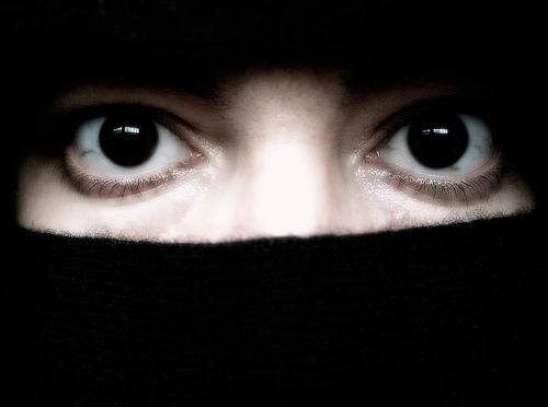 Burqa: une autre loi était possible